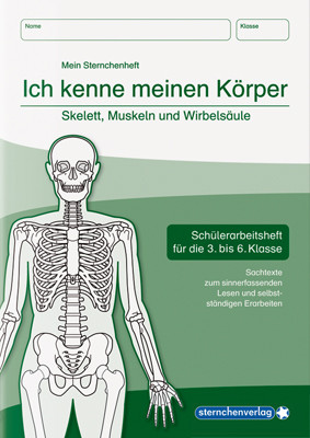 Skelett, Muskeln und Wirbelsäule