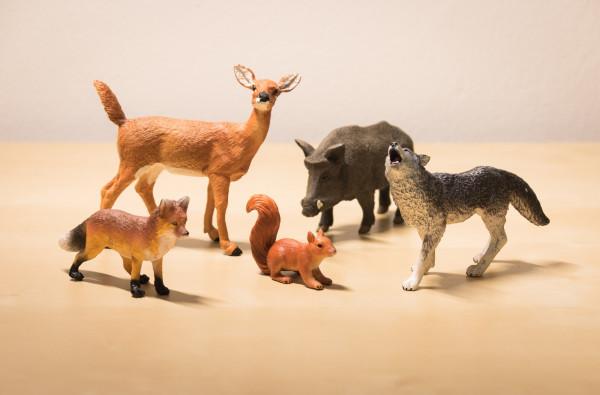Waldtiere - meine Sammlung